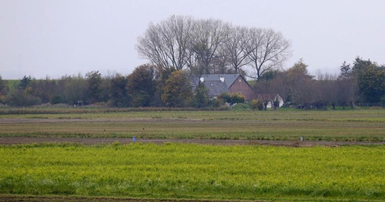 Openbare inschrijving pacht landbouwgrond Perkpolder